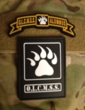 OLCMSS Patch and Tab